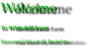 Welcome To Whitehill Farm Hamstead Marshall, Berkshire.